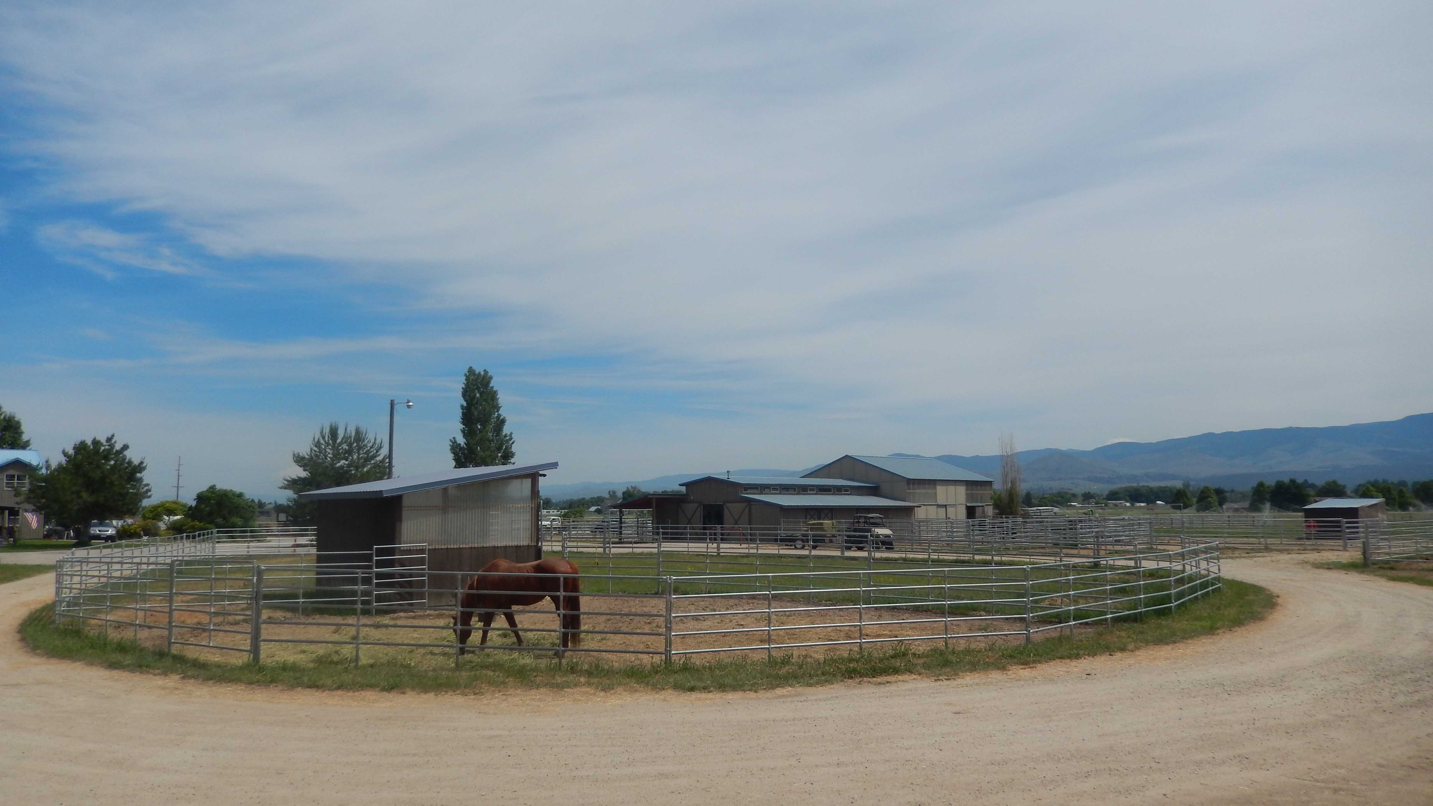 Vet with horse and corral (3)